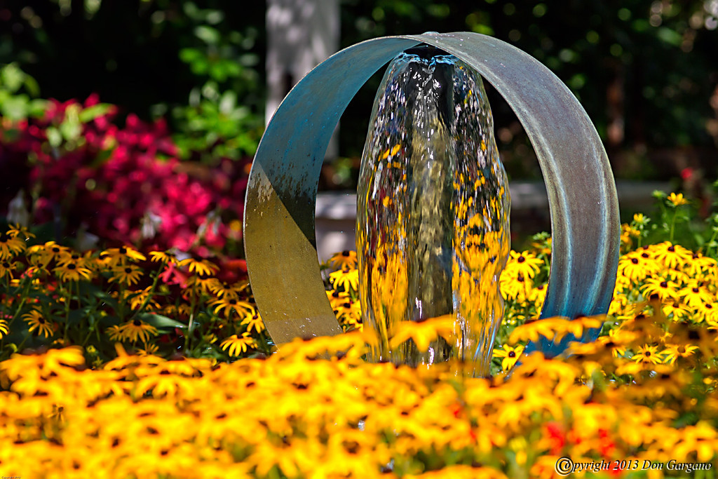 IMAGE: http://amtphoto.smugmug.com/Photos2013-1/Flowers/i-VBbfnNj/0/XL/Water%20Fountain-07-30-01cr%20-XL.jpg